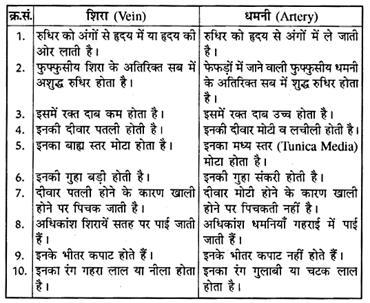 RBSE Solutions for Class 10 Science Chapter 2 मानव तंत्र image - 11