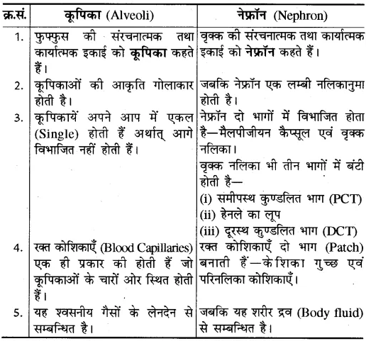 RBSE Solutions for Class 10 Science Chapter 2 मानव तंत्र image - 6