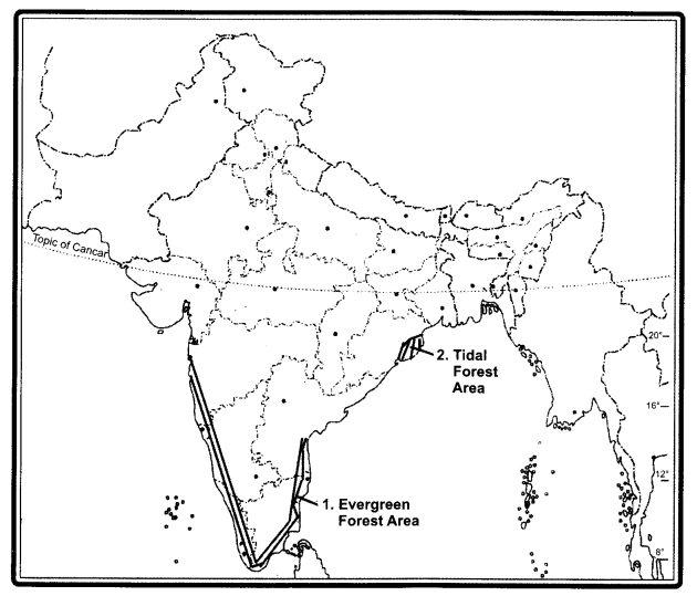 RBSE Solutions for Class 9 Social Science Chapter 15 Natural Vegetation and Soils of India 1