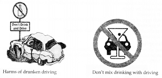 RBSE Solutions for Class 10 Science Chapter 20 Road Safety Education image - 1