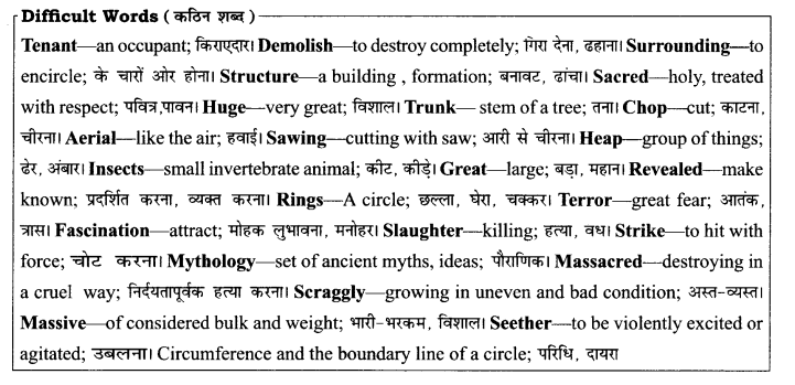 RBSE Solutions for Class 8 English Chapter 4 The Felling of the Banyan Tree