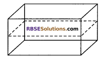 RBSE Solutions for Class 9 Maths Chapter 12 Surface Area and Volume of Cube and Cuboid Ex 12.1