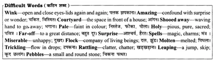Rajasthan Board Solutions for Class 8 English Chapter 14 The Curlew Island 1