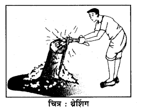 RBSE Solutions for Class 7 Science Chapter 3 पदार्थों का पृथक्करण 8