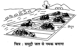 RBSE Solutions for Class 7 Science Chapter 3 पदार्थों का पृथक्करण 9