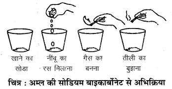 RBSE Solutions for Class 7 Science Chapter 5 अम्ल, क्षारक एवं लवण 5