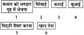 RBSE Solutions for Class 8 Science Chapter 1 कृषि प्रबन्धन 1