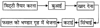 RBSE Solutions for Class 8 Science Chapter 1 कृषि प्रबन्धन