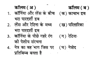RBSE Solutions for Class 8 Science Chapter 14 प्रकाश का अपवर्तन 1
