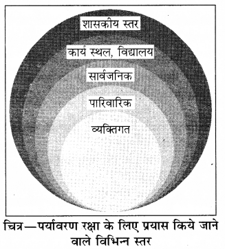 RBSE Solutions for Class 8 Science Chapter 17 पर्यावरण 2