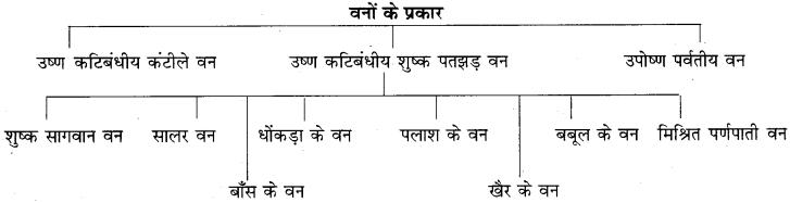 RBSE Solutions for Class 9 Social Science Chapter 15 भारत की प्राकृतिक वनस्पति एवं मृदाएँ। 2