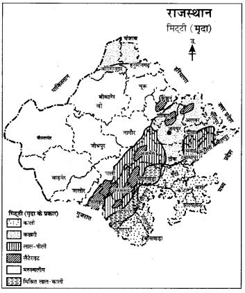 RBSE Solutions for Class 9 Social Science Chapter 15 भारत की प्राकृतिक वनस्पति एवं मृदाएँ। 4
