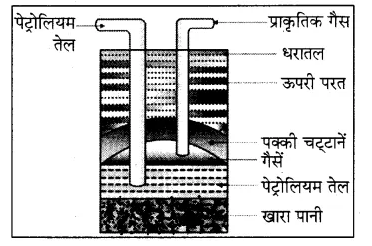 Rajasthan Board RBSE Class 8 Science Chapter 18 कार्बन और ईंधन 6