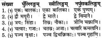 RBSE Solutions for Class 6 Sanskrit Chapter 10 संख्याज्ञानम् 8