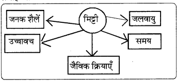 RBSE Solutions for Class 8 Social Science Chapter 4 भूमि संसाधन और कृषि