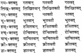 RBSE Solutions for Class 8 Sanskrit रञ्जिनी Chapter 13
