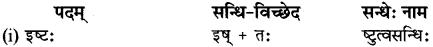 RBSE Class 12 Sanskrit व्याकरणम् सन्धिप्रकरणम् 10