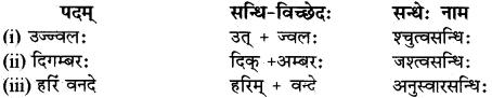RBSE Class 12 Sanskrit व्याकरणम् सन्धिप्रकरणम् 12