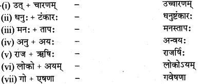 RBSE Class 12 Sanskrit व्याकरणम् सन्धिप्रकरणम् 3