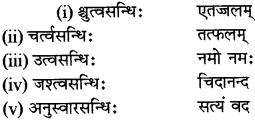RBSE Class 12 Sanskrit व्याकरणम् सन्धिप्रकरणम् 5