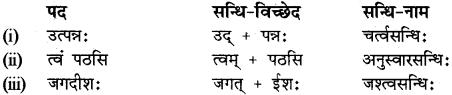 RBSE Class 12 Sanskrit व्याकरणम् सन्धिप्रकरणम् 7