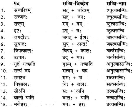 RBSE Class 12 Sanskrit व्याकरणम् सन्धिप्रकरणम् 8
