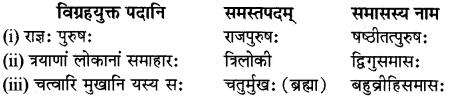 RBSE Class 12 Sanskrit व्याकरणम् समासप्रकरणम् 10