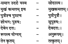 RBSE Class 12 Sanskrit व्याकरणम् समासप्रकरणम् 3