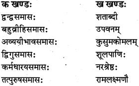 RBSE Class 12 Sanskrit व्याकरणम् समासप्रकरणम् 4