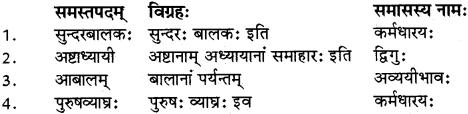 RBSE Class 12 Sanskrit व्याकरणम् समासप्रकरणम् 7