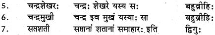 RBSE Class 12 Sanskrit व्याकरणम् समासप्रकरणम् 8