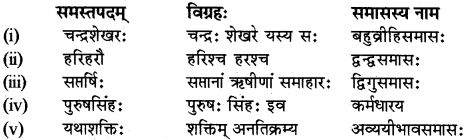 RBSE Class 12 Sanskrit व्याकरणम् समासप्रकरणम् 9