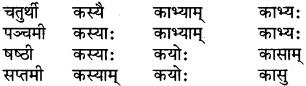 RBSE Class 6 Sanskrit परिशिष्टम् 16