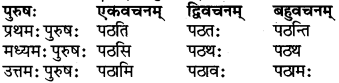 RBSE Class 6 Sanskrit परिशिष्टम् 24