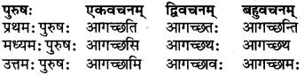 RBSE Class 6 Sanskrit परिशिष्टम् 30