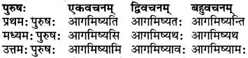 RBSE Class 6 Sanskrit परिशिष्टम् 31