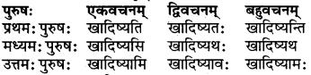 RBSE Class 6 Sanskrit परिशिष्टम् 33