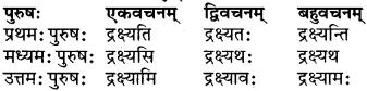 RBSE Class 6 Sanskrit परिशिष्टम् 52