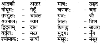 RBSE Class 6 Sanskrit परिशिष्टम् 69