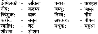 RBSE Class 6 Sanskrit परिशिष्टम् 70