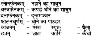 RBSE Class 6 Sanskrit परिशिष्टम् 72