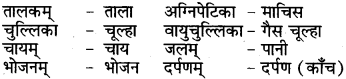 RBSE Class 6 Sanskrit परिशिष्टम् 73