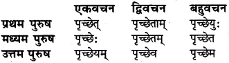 RBSE Class 6 Sanskrit व्याकरण धातु-रूपम् 42