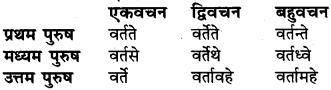 RBSE Class 6 Sanskrit व्याकरण धातु-रूपम् 43