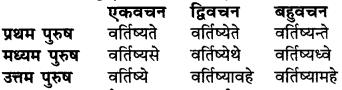 RBSE Class 6 Sanskrit व्याकरण धातु-रूपम् 45