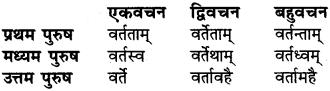 RBSE Class 6 Sanskrit व्याकरण धातु-रूपम् 46