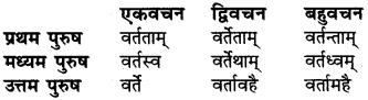 RBSE Class 6 Sanskrit व्याकरण धातु-रूपम् 47