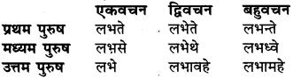 RBSE Class 6 Sanskrit व्याकरण धातु-रूपम् 48