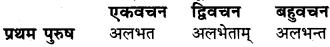 RBSE Class 6 Sanskrit व्याकरण धातु-रूपम् 49