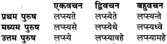 RBSE Class 6 Sanskrit व्याकरण धातु-रूपम् 51